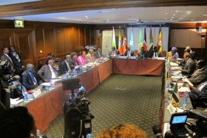 IGAD's 28th Summit on South Sudan in Addis Ababa, 07/11/2014