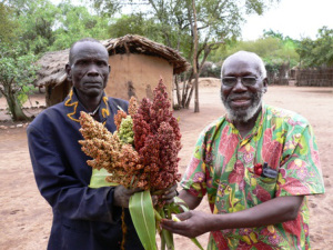 Bishop and the elder proudly showing off with the fruits of peace in Kuron Peace Village