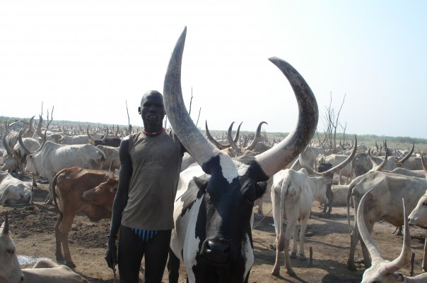Cattle keeper in Jonglei [photo] Jongkuch Jo Jongkuch
