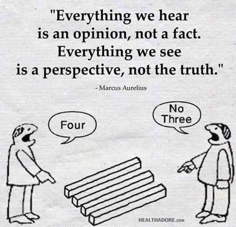 opinion, perspective