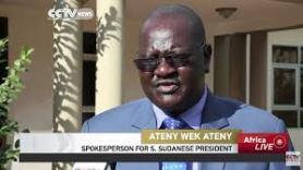 Ateny Wek, Presidential press secretary