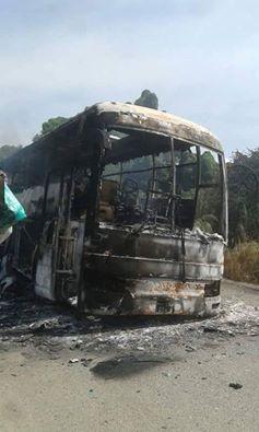 eco-bus