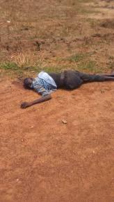 Victims of the Bor-Juba Road ambush, killed near Jemeiza on 6 May 2017